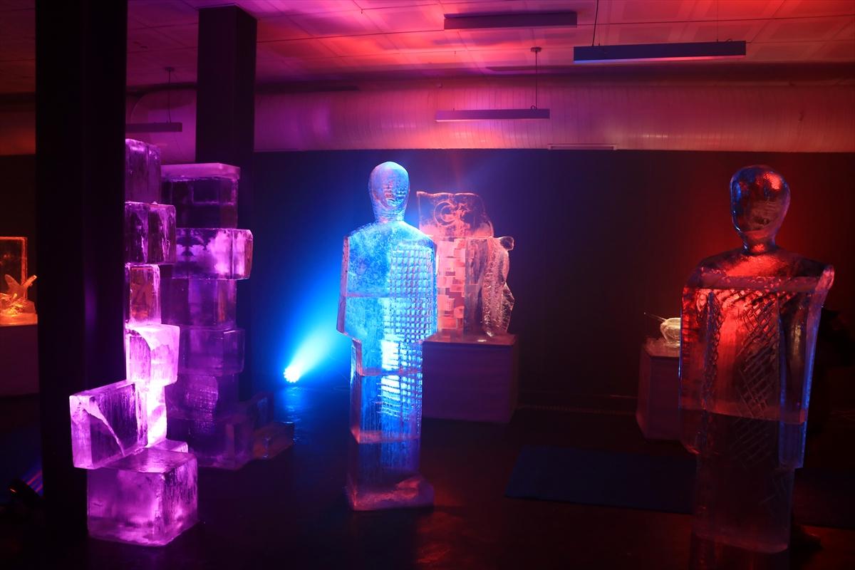 Erzurum'da Türkiye'nin ilk buz müzesi açıldı #2